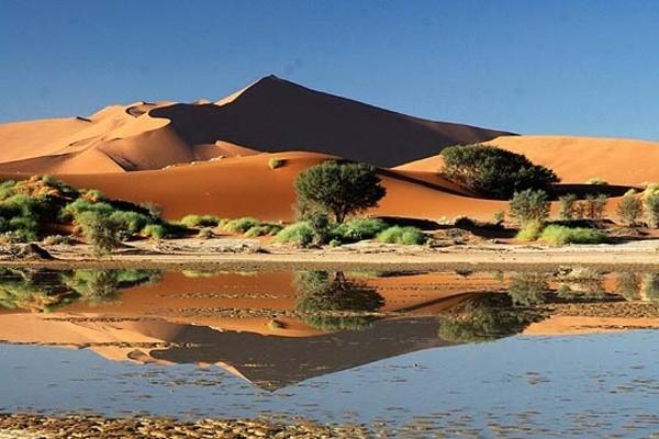 Photo - Dunes & Désert de Namibie
