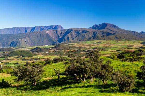 Nature - Autotour Les Routes Créoles et Maurice Saint Denis Reunion