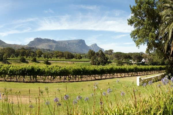 Nature - Circuit Indispensable Afrique Du Sud