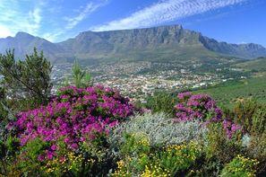 Vacances Le Cap: Circuit Paysages sud-africains Privatif