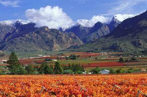 Afrique Du Sud-Le Cap, Circuit Paysages Sud Africains et Extension Safari