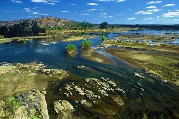 Nature - Circuit Splendeurs de l'Afrique du Sud Le Cap Afrique Du Sud