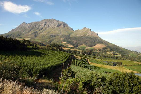 Nature - Circuit Les Inoubliables de l'Afrique du Sud Le Cap Afrique Du Sud