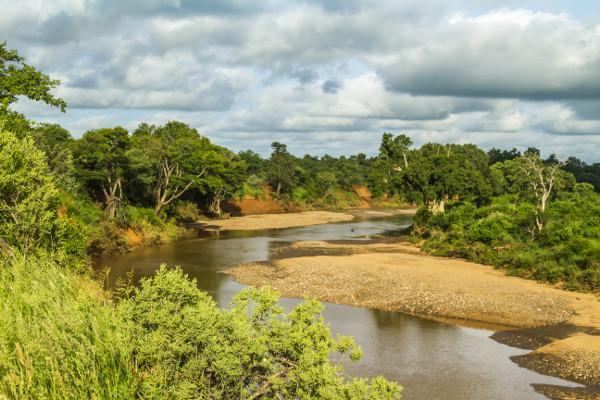 Nature - Circuit Premier Regard Afrique du Sud + Chutes Victoria Le Cap Afrique Du Sud