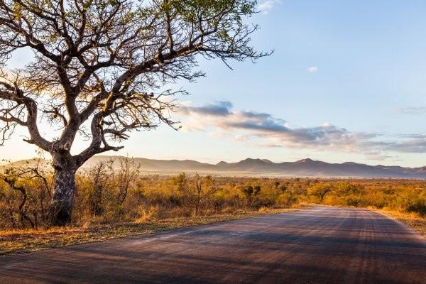 Nature - Circuit Grandeurs et magie d'Afrique du Sud + extension aux Chutes Victoria Le Cap Afrique Du Sud