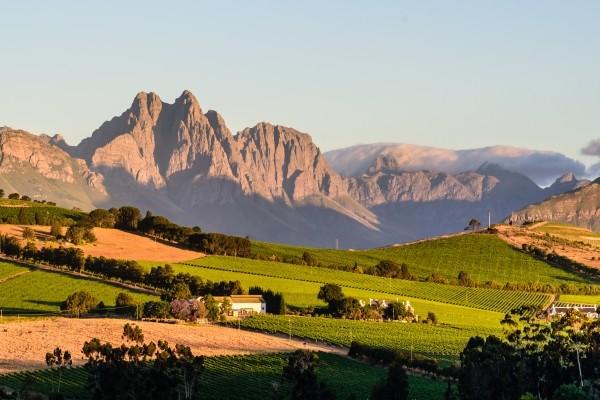 Nature - Circuit Grand Tour d'Afrique du Sud Le Cap Afrique Du Sud