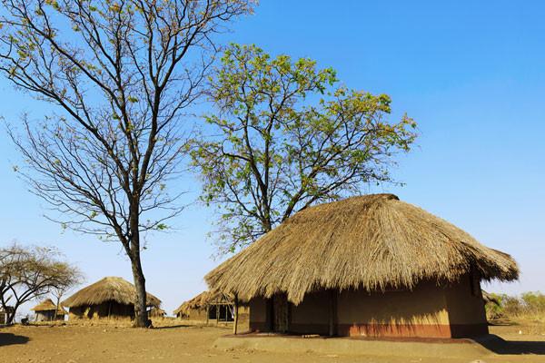 Nature - Circuit Premier Regard Afrique du Sud Le Cap Afrique Du Sud