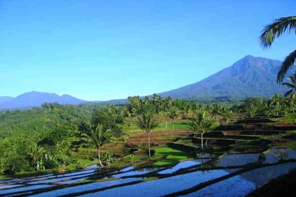 Nature - Circuit Indispensable Bali Denpasar Bali