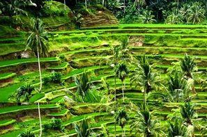 Bali-Denpasar, Circuit Les Merveilles de Bali