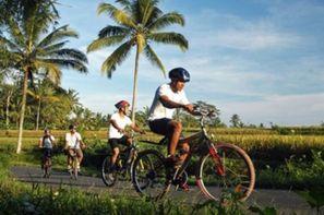 Vacances Denpasar: Combiné circuit et hôtel Bali zen et aventure