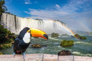 Vacances Foz do Iguaçu: Circuit Au Coeur du Brésil