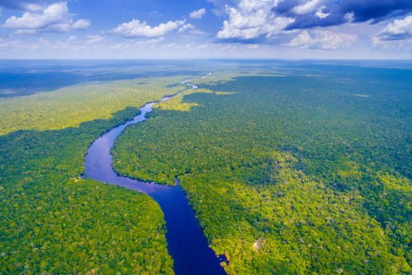 Nature - Circuit Lumières du Brésil & Amazonie Salvador De Bahia Bresil
