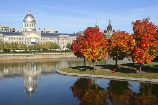 Ville - Circuit Canada Est - Sentiers, lacs et forêts Toronto Canada