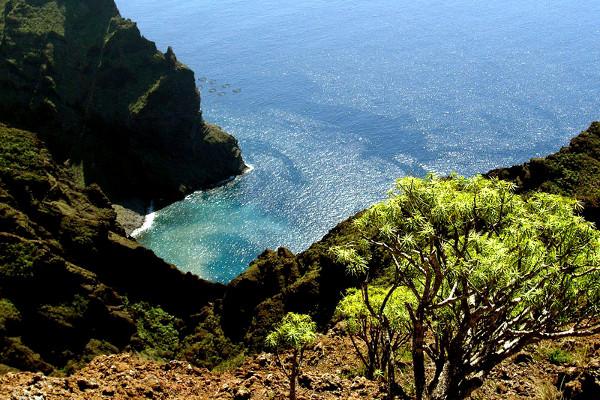 Nature - Circuit Ténérife Saveur Nature 4* Tenerife Canaries