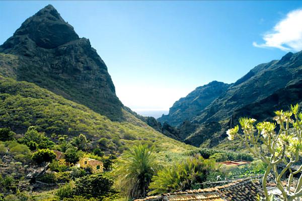 Nature - Circuit Au Cœur de Tenerife 3* Tenerife Canaries