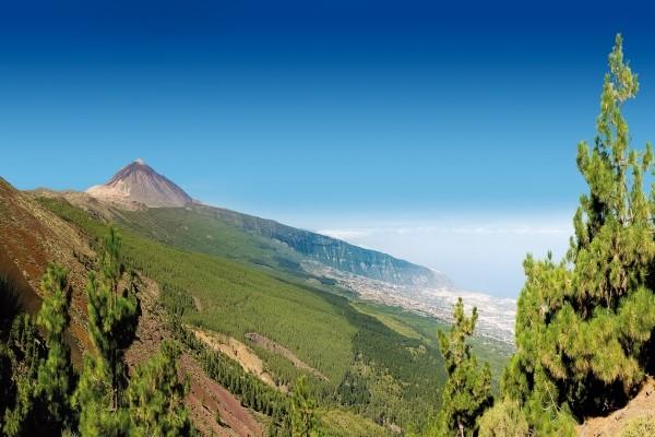 Nature - Circuit Au Cœur de Tenerife 4* Tenerife Canaries