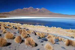 Vacances Santiago: Circuit Splendeurs du Chili
