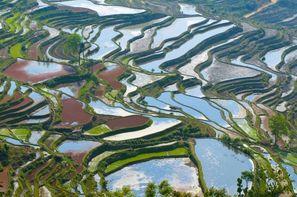 Vacances Shanghai: Circuit Trésors de Chine