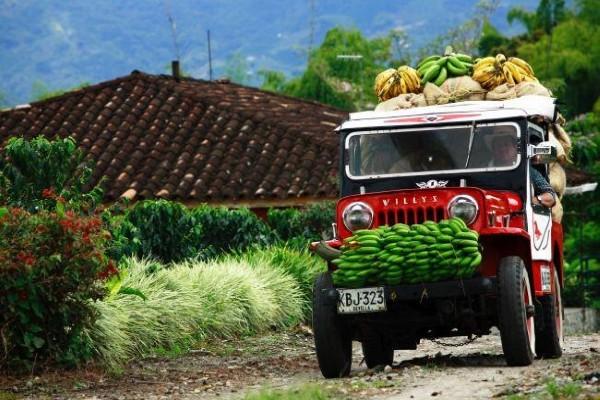 Nature - Circuit Découverte colombienne Bogota Colombie
