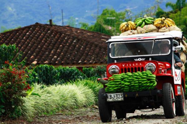 Nature - Circuit Premiers regards de Colombie & Santa Marta Bogota Colombie