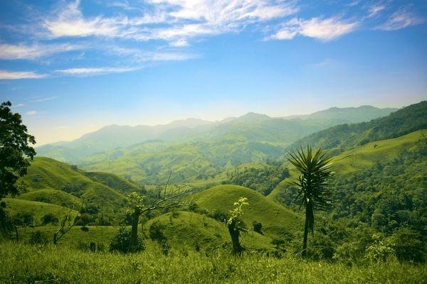 Nature - Circuit Indispensable Costa Rica San jose Costa Rica