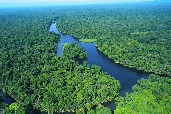 Nature - Circuit Splendeurs du Costa Rica San jose Costa Rica