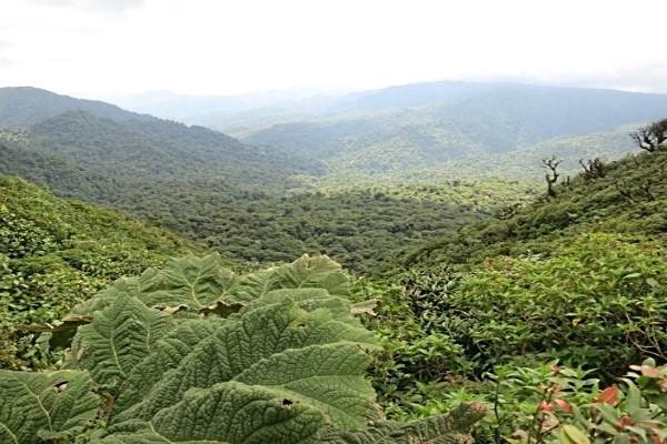 Nature - Circuit Incontournables du Costa Rica San jose Costa Rica