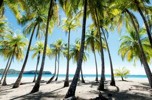 Costa Rica-San jose, Circuit Indispensable Costa Rica + extension plage