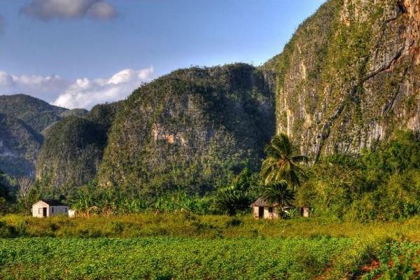 Nature - Circuit Cuba Grandiosa, tour de l'île + Extension La Havane Cuba