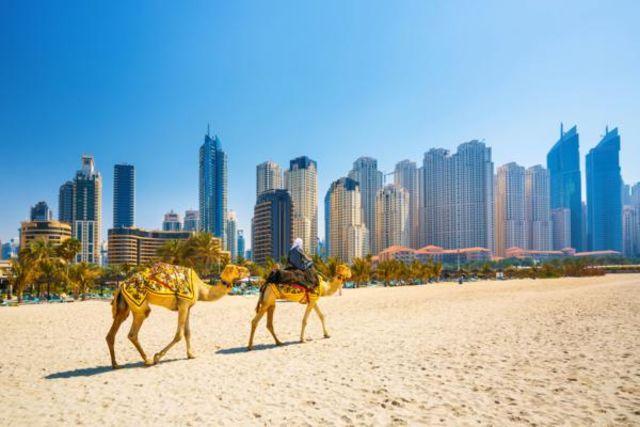 Fram Dubai et les Emirats : hotel Circuit Gigantisme et traditions des Émirats - Dubai