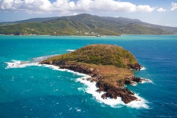 Nature - Circuit Magie de la Guadeloupe Pointe A Pitre Guadeloupe