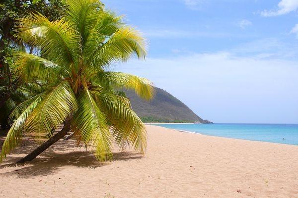 Plage - Circuit Magie de la Guadeloupe Pointe A Pitre Guadeloupe