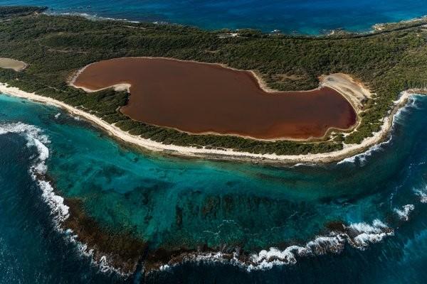 Nature - Circuit FRAM Nos Amis Gwadloupéens 3* Pointe A Pitre Guadeloupe