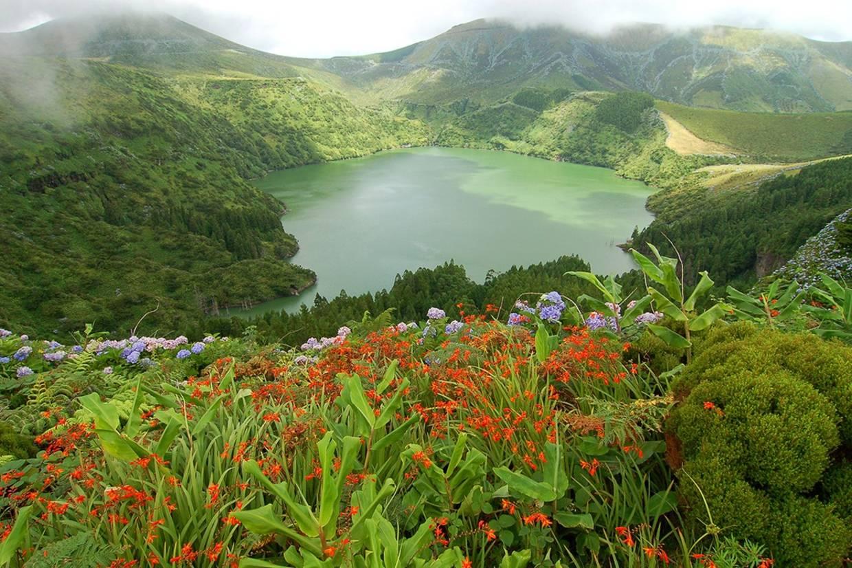 Nature - Circuit Les Açores, l'archipel féerique Ponta Delgada Iles Des Acores