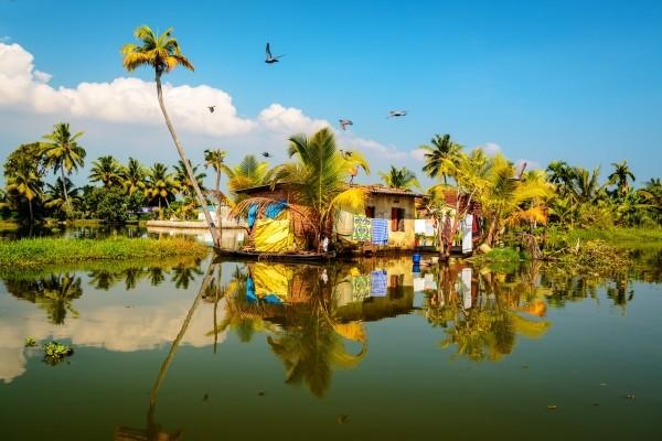 Ville - Circuit Les Incontournables de l'Inde du Sud 3* Cochin Inde