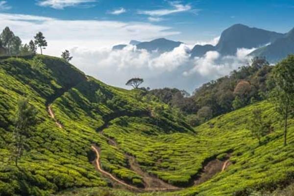 Photo - Indispensable Inde du Nord