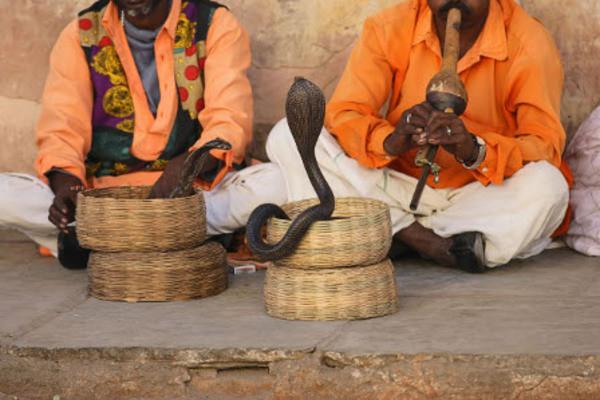 (fictif) - Circuit Merveilles de l'Inde du Nord