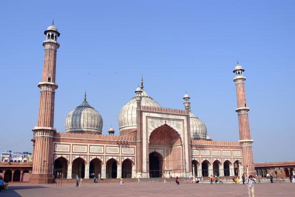Delhi maja jasmid