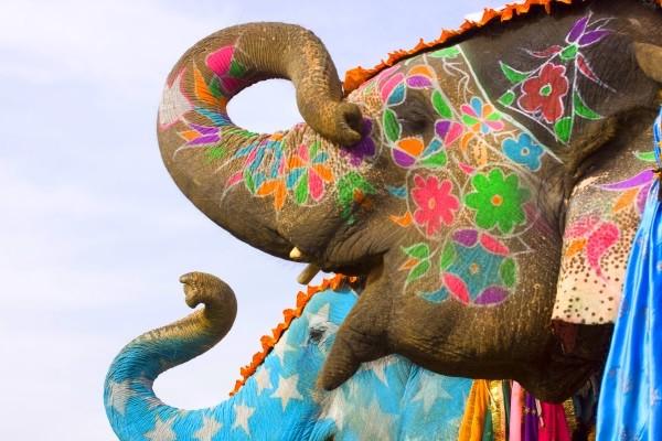 Ville - Intensément Rajasthan 3* Delhi Inde