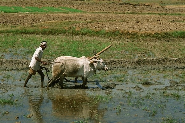 (fictif) - Circuit Lumieres de l'Inde du Sud Madras Inde