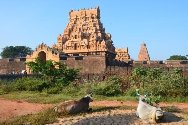Monument - Circuit Indispensable Inde du Sud Madras Inde