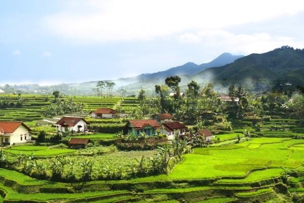 Nature - Circuit L'Indonésie en Version Originale 3* Yogyakarta Indonesie