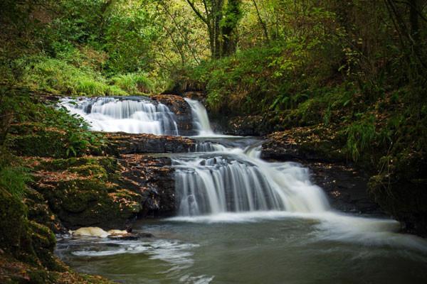 Nature - Circuit Splendeurs de l'Irlande Dublin Irlande