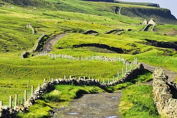 Nature - Circuit Indispensable Irlande Dublin Irlande
