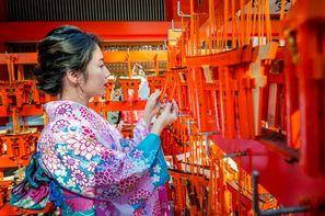 Vacances Osaka: Circuit Beautés du Japon