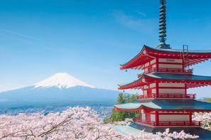 Japon-Osaka, Circuit Le Japon, Trésors du Soleil Levant