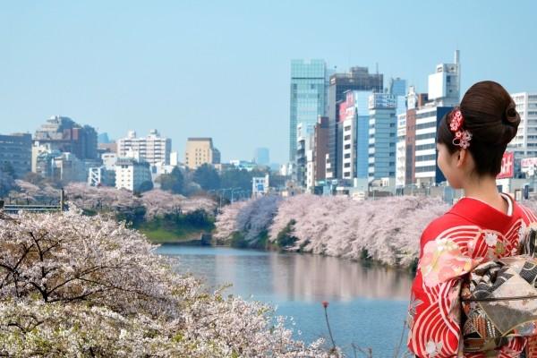 (fictif) - Circuit Premier Regard Japon Tokyo Japon