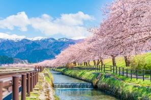 Japon-Tokyo, Circuit Premier Regard Japon & Alpes Japonaises