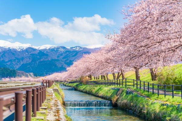 Nature - Circuit Premier Regard Japon & Alpes Japonaises Tokyo Japon