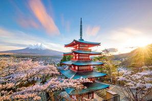 Vacances Tokyo: Circuit Samouraïs et Kimonos